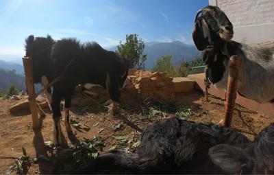 2 days ranikot village and balthali hike