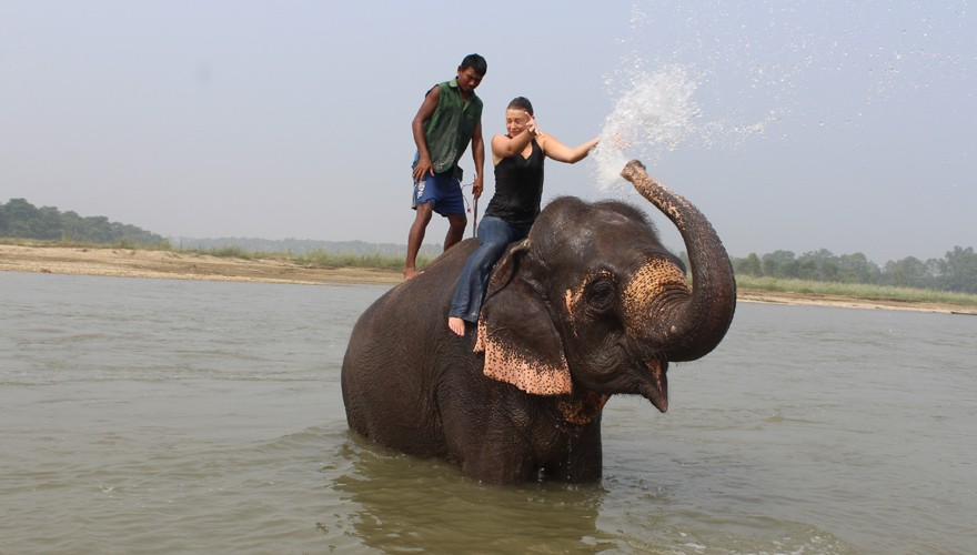 elephant bathing tour chitwan