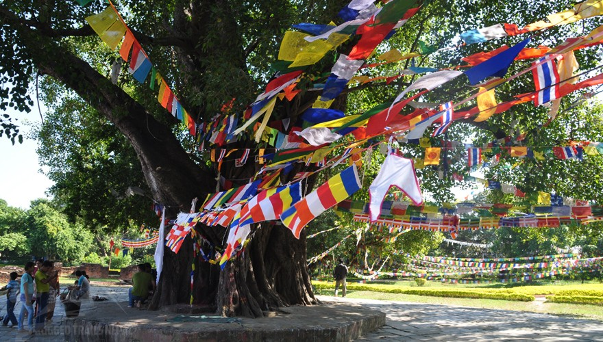 lumbini tour package