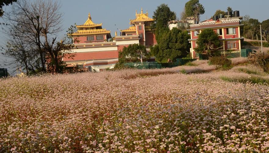 Monastery Tour Kathmandu
