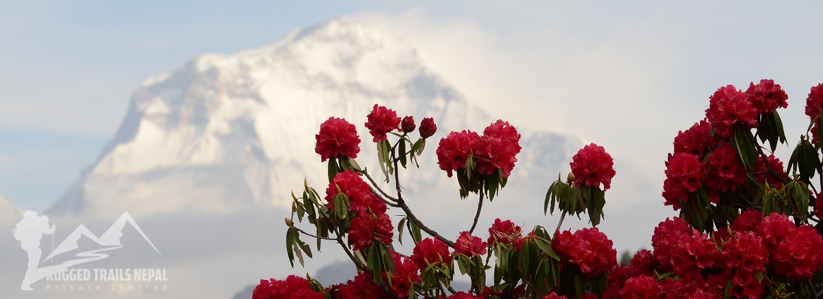 places to visit in nepal in spring