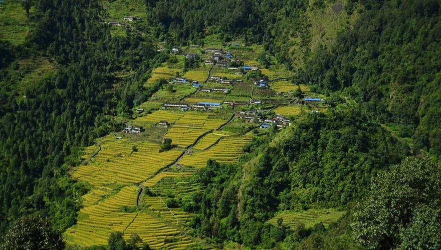 trekking in nepal annapurna foothill