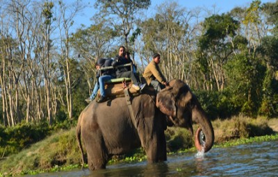 chitwan-national-park-safari
