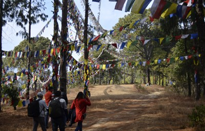 one day champadevi hill hiking trips from kathmandu
